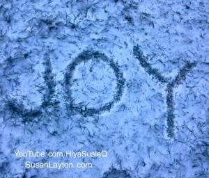 JOY-Snow